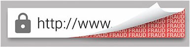 Domain Spoofing